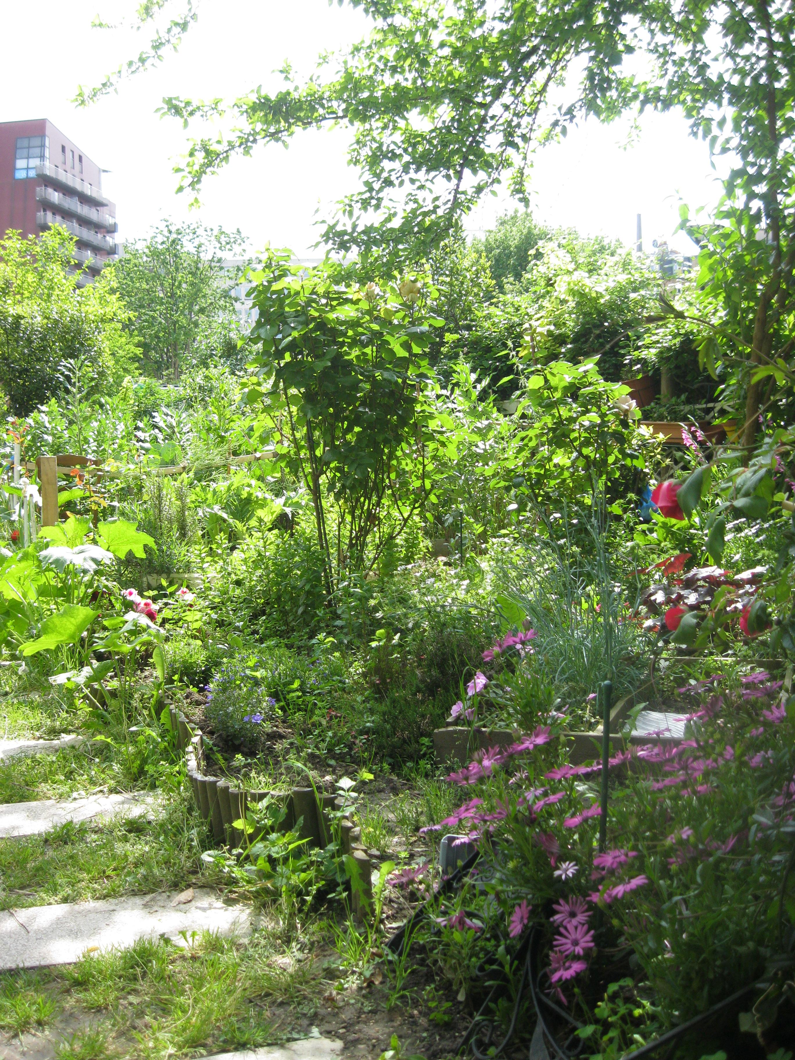 Sedna rss le jardin dans tous ses etats r seau for Le jardin 75019