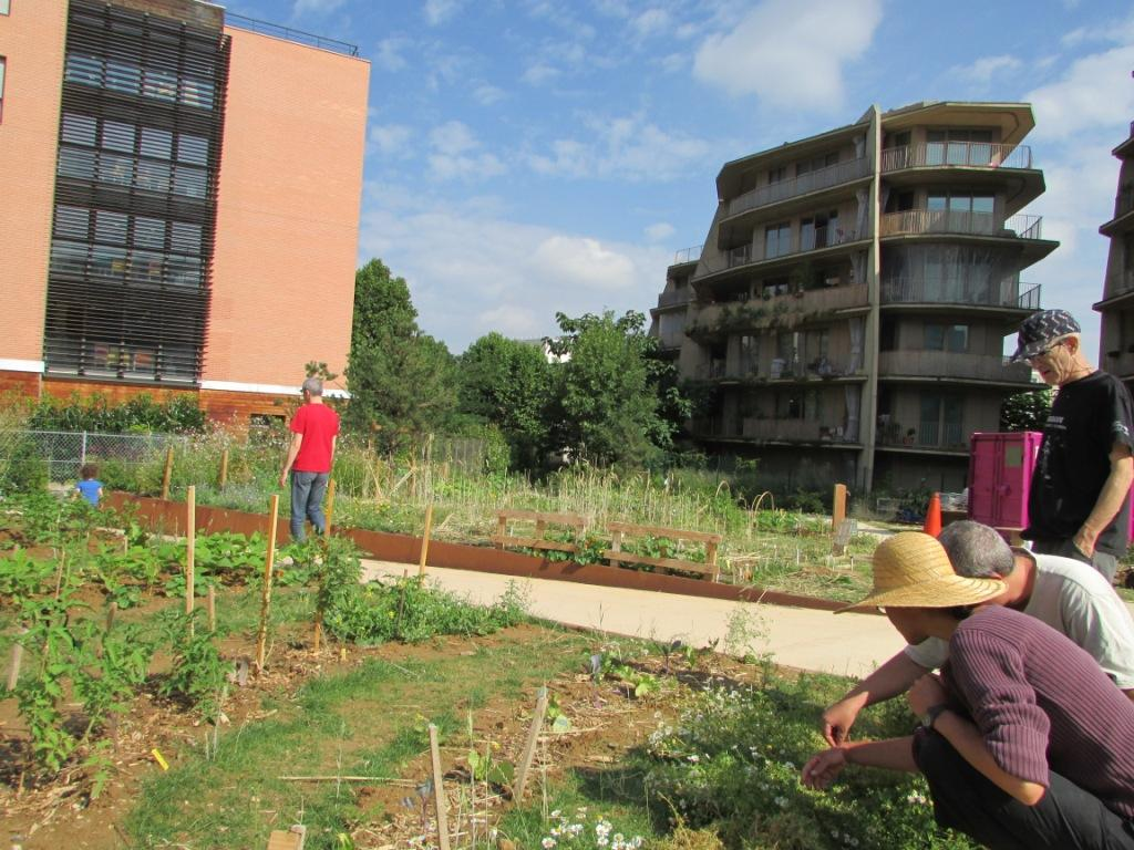 Jardin solidaire h rold jardinons ensemble for Le jardin 75019