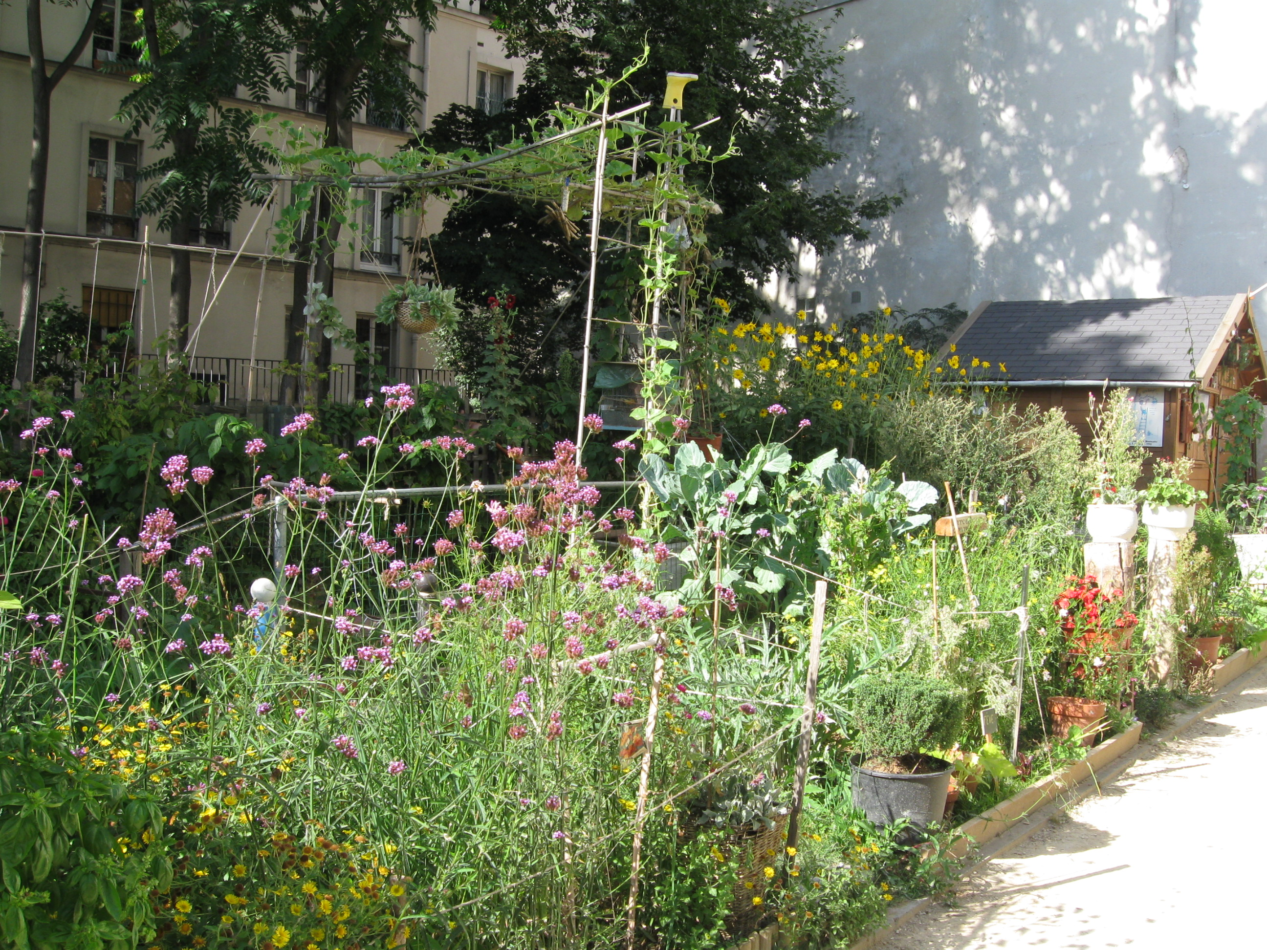Le jardin partag des deux n thes jardinons ensemble for Jardin 75018