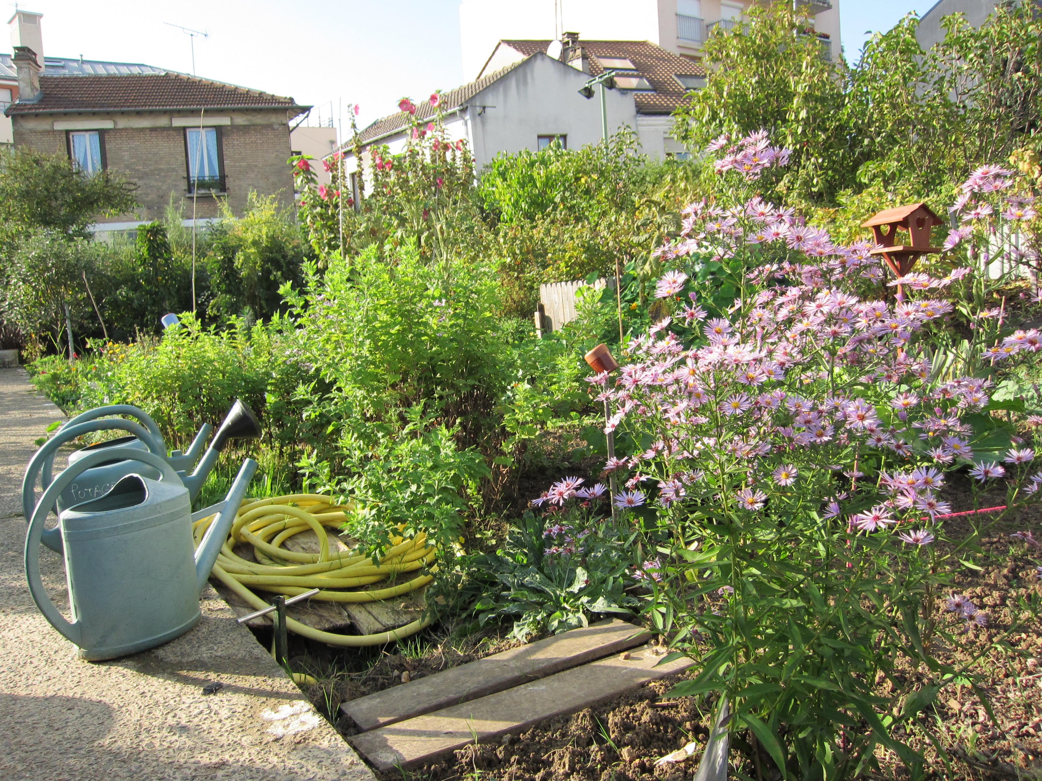 Potager des lilas jardinons ensemble - Allee de jardin potager ...