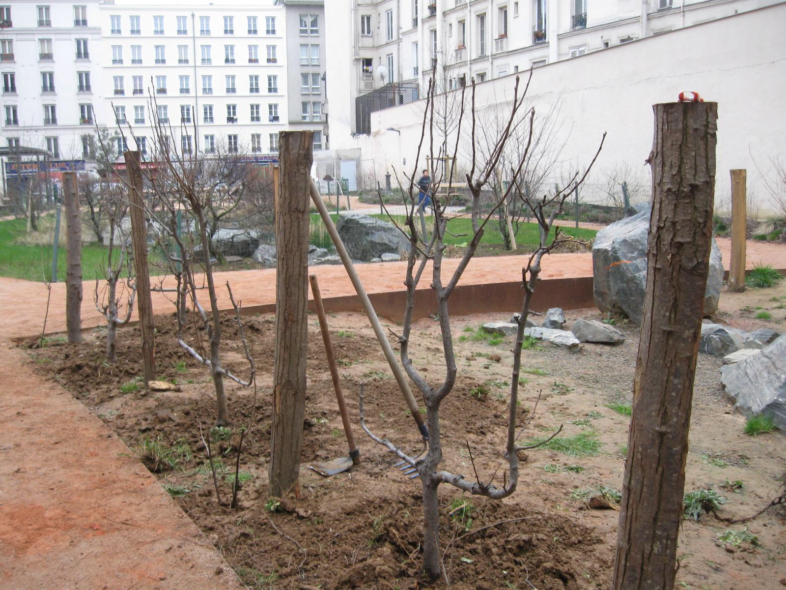 Le verger de la goutte d 39 or jardinons ensemble for Art du jardin zbinden sa
