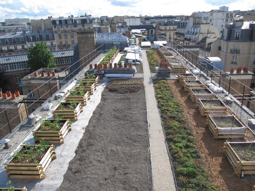 Design cabane jardin toit vegetal aulnay sous bois 1222 cabane en palette tuto cabane en - Jardin sauvage st roch l achigan colombes ...